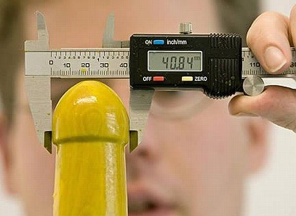 Средний размер члена в россии фото